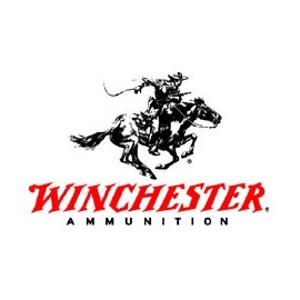 WINCHESTER 270WSM Accubond CT 140gr