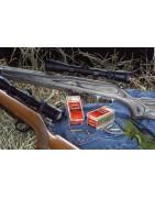 Rifles del Calibre 17HMR